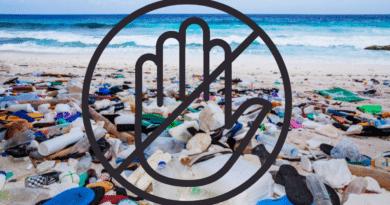 , ¡México prohíbe los plásticos de un solo uso!