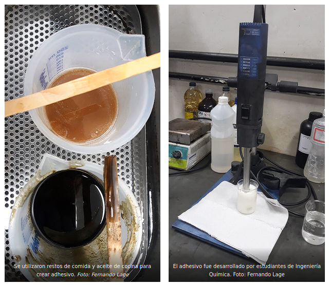 , Crean un potente adhesivo industrial utilizando sólo restos de comida