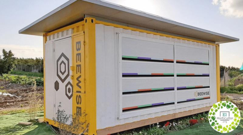 , Beewise, la Colmena inteligente capaz de salvar a millones de abejas