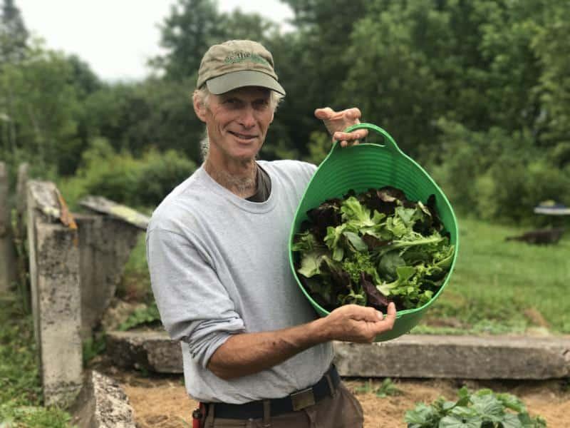 , Alquila los patios delanteros de sus vecinos y Produce alimentos orgánicos con ganancias exuberantes