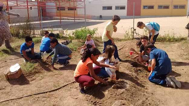 , Este asombroso Huerto escolar debería ser replicado en todo el mundo