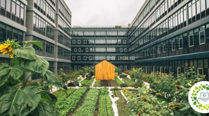 , Este inusual complejo de apartamentos tiene su propia Huerta urbana de 464 metros cuadrados