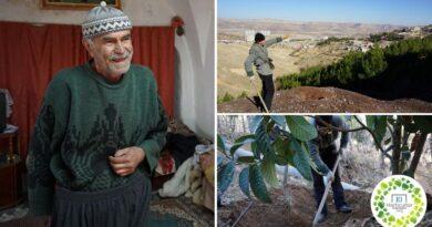 , Este hombre de 71 años Convirtió un basural en un hermoso bosque