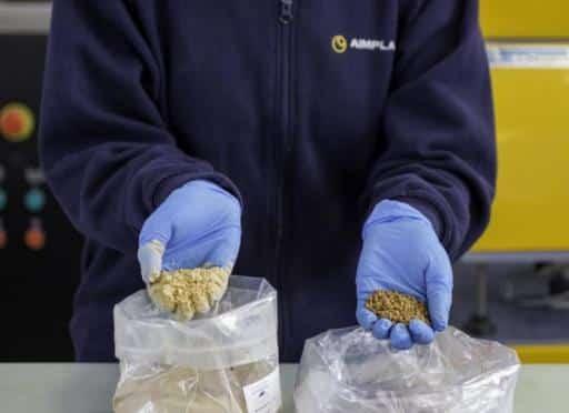 Proyecto español desarrolla envases de bioplástico utilizando residuos de hueso de aceituna