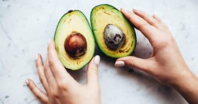 , Harina de semillas de aguacate: alto potencial nutricional. Beneficios y cómo prepararla