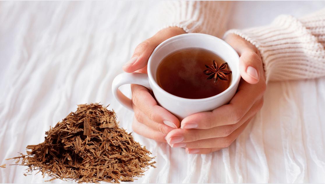 Uña de gato, ¿para qué sirve el té de esta planta?