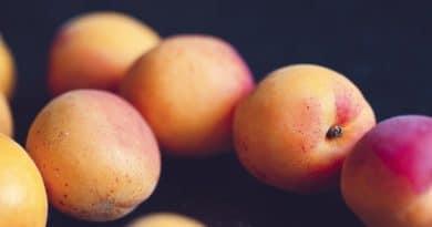 6 Beneficios del melocotón para la salud