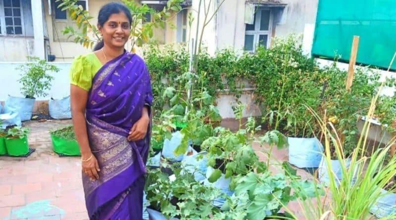, Ama de casa cosecha el 90% de sus vegetales, tiene más de 100 bolsas de cultivo en su terraza